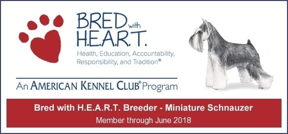 Member of the American Kennel Club H.E.A.R.T. Breeder Program